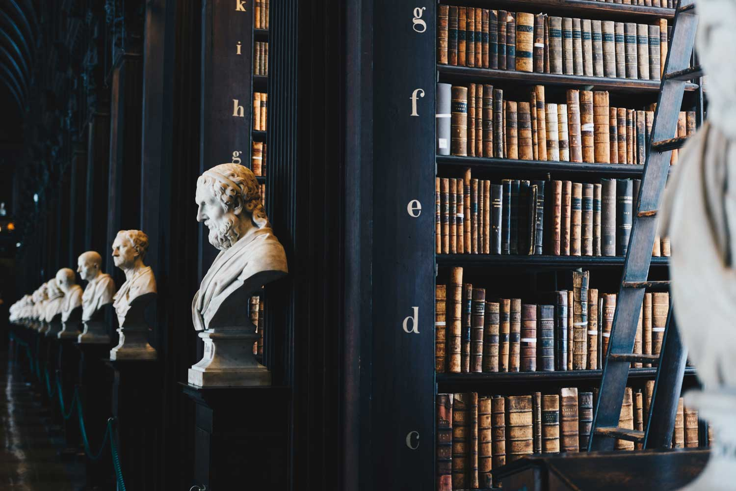 Rows of bookshelves filled with books are met with a bust at each bookshelf's end